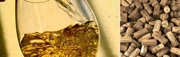 Hvordan lages hvitvin?