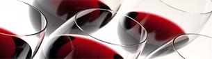 Basis om vin