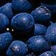 Blå druer del 2