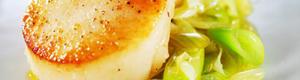 Kamskjell med sitron og ingefær